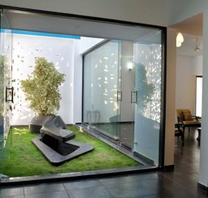 Indoor Garden with Tree