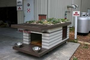 GreenRoof Dog House-2